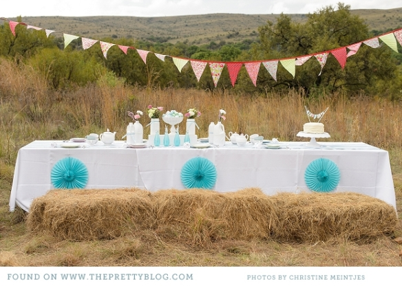 blue-and-pink-bridal-shower_001