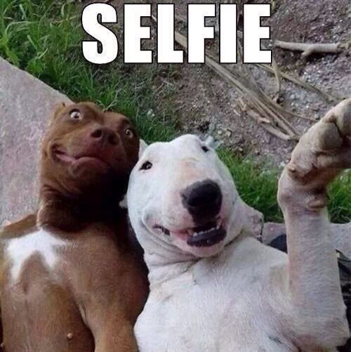selfie, A+A eventos, humor
